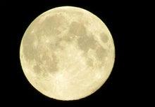 PENANG LIFE ペナンライフ-満月