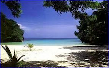 $ジャマイカ道、YASJAMAICAのブログ