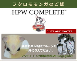 HPWコンプリート