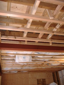 甘棠のブログ-LDKの天井