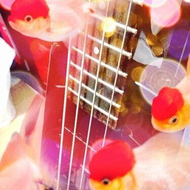 ∞最前線 通信-bass