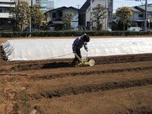 後藤農園-2013-02-10-9