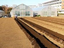 後藤農園-2013-02-10-4