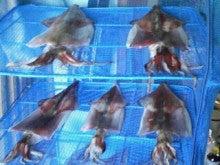赤いアンバサダーの釣行記 etc...-201302111344000.jpg