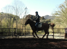 馬森(まもり)牧場  千葉県南房総市・お馬とふれあえる愉快な体験牧場-ドウとサポーターさん