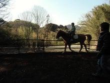 馬森(まもり)牧場  千葉県南房総市・お馬とふれあえる愉快な体験牧場-速足の練習