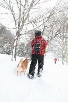 お散歩不足解消プロジェクト
