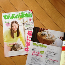 はまねこ 倭と杏-image