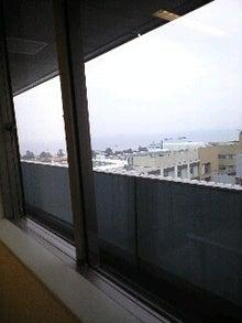 ずれずれブログ…湘南で猫と暮らせば…-130215_1253~0001.jpg