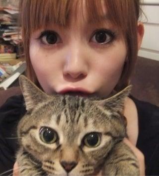 猫と同じ表情の大きな目をしてジッとみつめる中川翔子