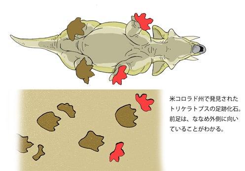 川崎悟司 オフィシャルブログ 古世界の住人 Powered by Ameba-トリケラトプスの足跡