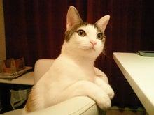 PFL★MIKIのブログ-2013021421400000.jpg