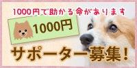 1000円サポーター