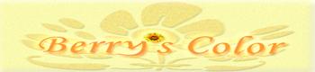 $仙台★カウンセリング★心理セラピールーム★Berry's Color★ ~最上級の笑顔をアナタに~-Berry's Color logo
