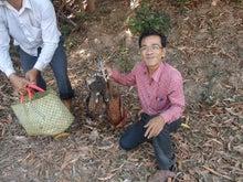 カンボジアに導かれ~青年海外協力隊員プログラムオフィサーMiwa~-5
