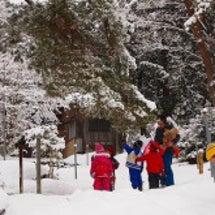 雪のキャンバス(よう…