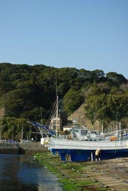 スタッフ(ぬ)のブログ-勝浦雛-豊浜港船
