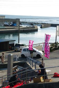 スタッフ(ぬ)のブログ-勝浦雛-妙海寺石段と海