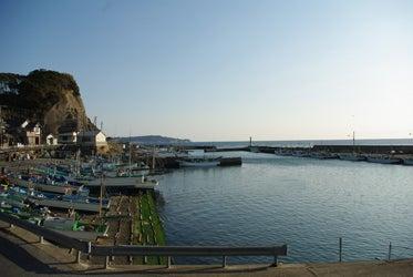 スタッフ(ぬ)のブログ-勝浦雛-豊浜港