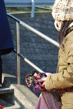 スタッフ(ぬ)のブログ-勝浦雛-妙海寺人形アップ