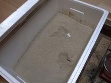 京町家を買って改修する男のblog-乾物屋灰