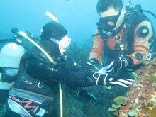 $レンタル器材でライセンス取得!7割が女性のダイビング教室:横浜校-体験