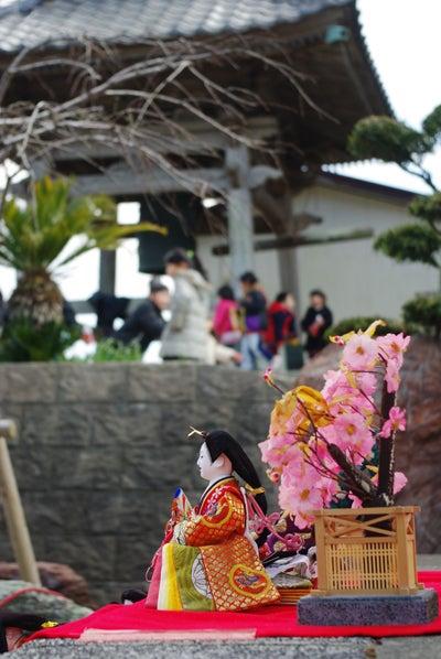 スタッフ(ぬ)のブログ-勝浦-寺市雛と子供