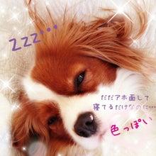 美咲(*´∀`*)のブログ