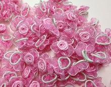 ひろみちゃんと10pooのおきらくブログ-巻きバラミニ ピンク