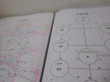 $札幌南区/願いを叶える生命の樹-生命の樹ワークレッスン