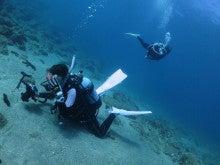 熊本のダイビングショップ バウラインスクーバ キャンペーン情報