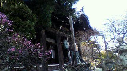 $バスとタクシーの予約サイト 公式ブログ-kamakura
