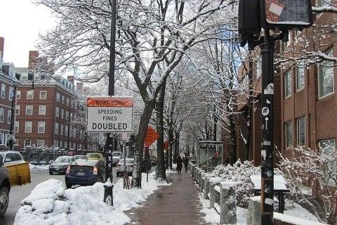 みんみんのblog  ~ ボストン便り ~