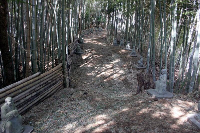 小山田城/二重の堀切