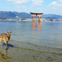 広島旅行♡