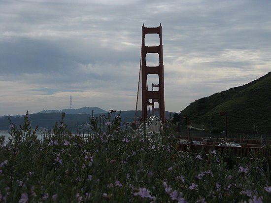 Love from California・・・-ggb
