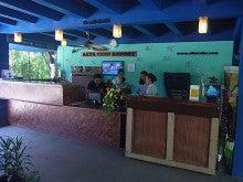 ニャン太とカメ吉のセブ島 留学 ブログ