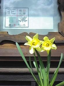 標葉 千香子 オフィシャルブログ ~花言葉からのメッセージ~