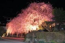 淡路島 タクシー 乗務日誌
