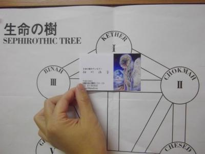 $札幌南区/願いを叶える生命の樹-生命の樹