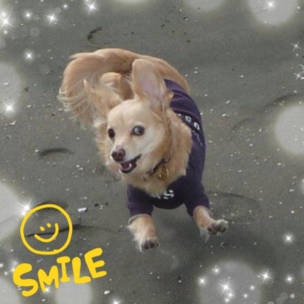 $twinkle, twinkle, little star-tmp_image_EUAVJY.jpg