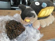 明石の野菜好き「かふぇ&れすとらん しふぉん」のブログ-NCM_0224.JPG