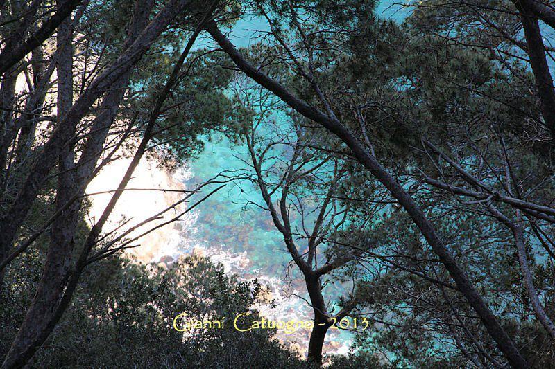 【彼女の恋した南イタリア】 - diario  イタリアリゾート最新情報    -これもまた、カプリブルー・・