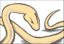 ラクガキ帳(コンソメ味)-白蛇