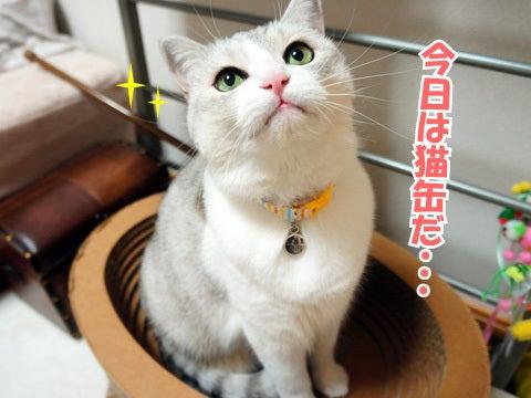 うにオフィシャルブログ「うにの秘密基地」Powered by Ameba