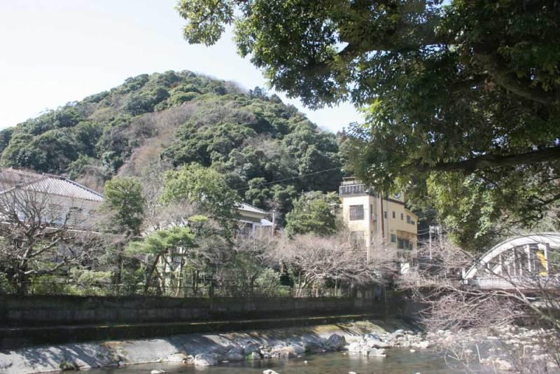 湯坂城/国道1号から見上げる