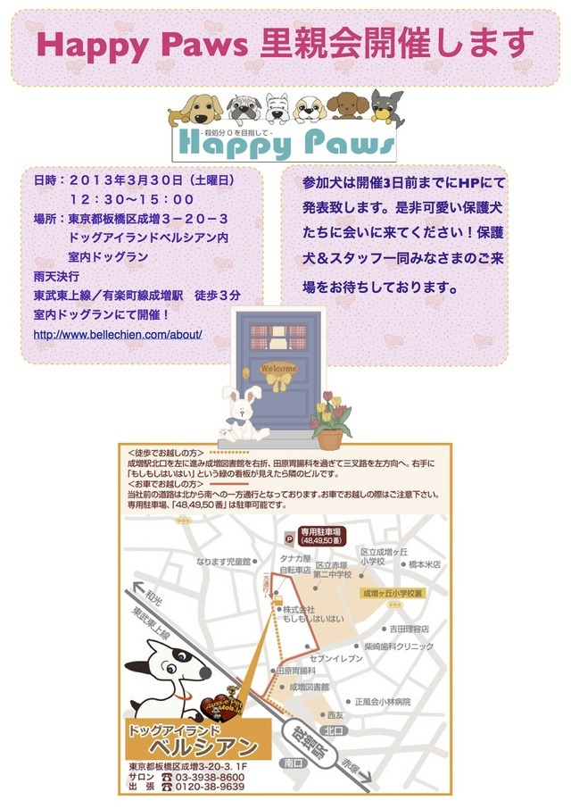 hitomi@Happy Paws