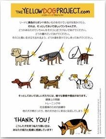 $Atomのつぶやき ~犬ブログ~