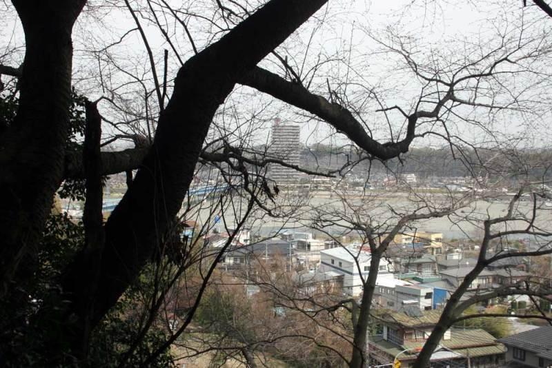 小沢城/第六天社から見た相模川