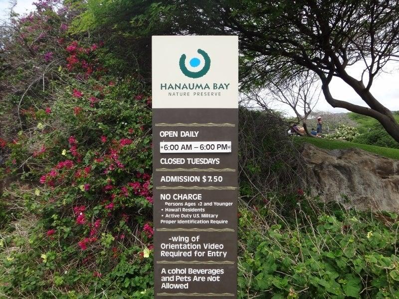 世界を旅する年収1億円ブロガー 川島和正オフィシャルブログ Powered by Ameba-Hawaii8-1
